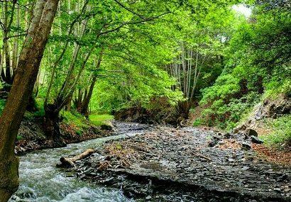 طبیعت زیبای درود نیشابور